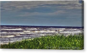 Fine Art America Pic 147 Sargent Ocean View Canvas Print by Darrell Taylor