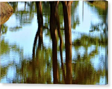 Fine Art Photography - Reflections Canvas Print by Gerlinde Keating - Keating Associates Inc