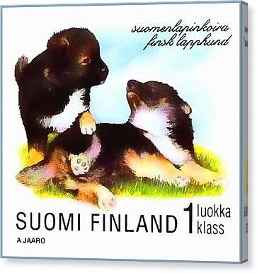 Finnish Lapphund Canvas Print by Lanjee Chee