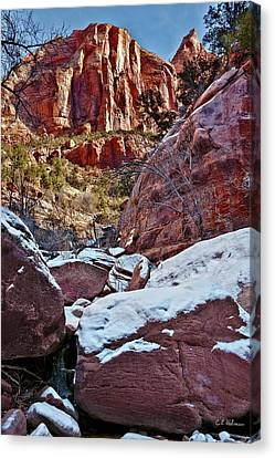 Fire And Ice Canvas Print by Christopher Holmes