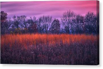 Fire And Ice - Sunset And Prairie At Retzer Nature Center Canvas Print by Jennifer Rondinelli Reilly - Fine Art Photography