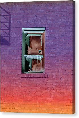 Fire Escape Window 2 Canvas Print by Tim Allen