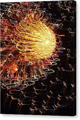 Fire Flower Canvas Print by Karen Wiles