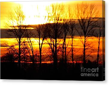 Fire In The Sky Canvas Print by Nick Gustafson