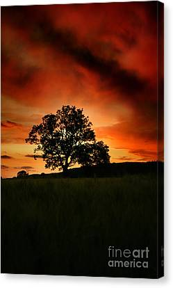 Fire On The Sky Canvas Print by Angel  Tarantella