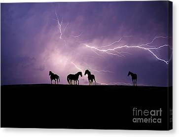 Fire Storm Canvas Print by Lisa Dearing