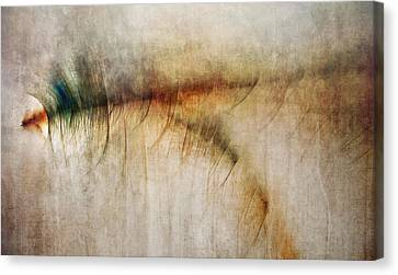 Fire Walk With Me Canvas Print by Scott Norris