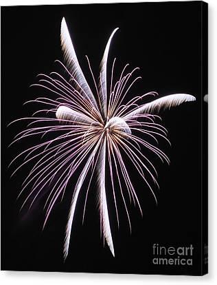 Fireworks 006 Canvas Print by Ken DePue