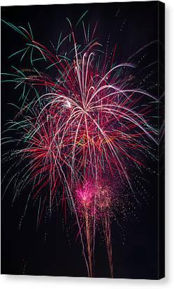 Fireworks Bursting In Night Sky Canvas Print by Garry Gay