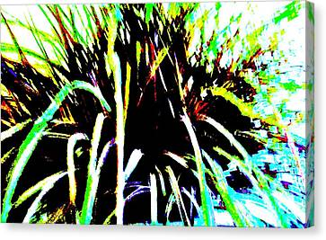 Fireworks Canvas Print by Marsha Heiken