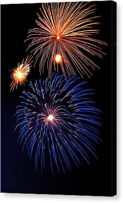 Fireworks Wixom 1 Canvas Print by Michael Peychich