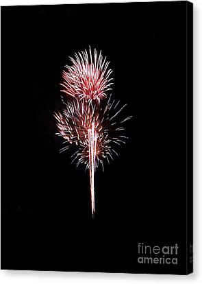 Fireworks10 Canvas Print by Malcolm Howard
