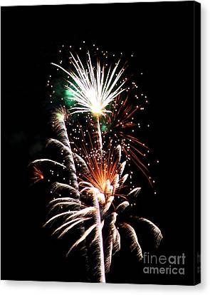 Fireworks2 Canvas Print by Malcolm Howard