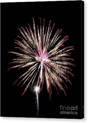 Fireworks4 Canvas Print by Malcolm Howard