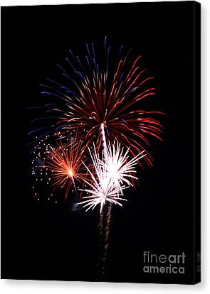 Fireworks9 Canvas Print by Malcolm Howard
