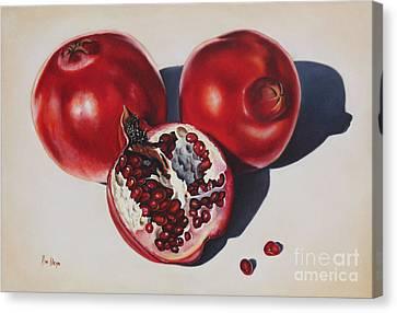 First Fruits I Canvas Print by Ilse Kleyn