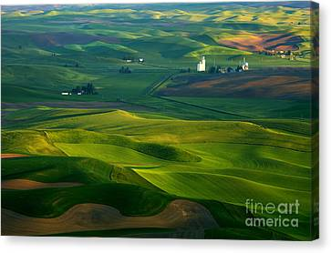 First Light On The Palouse Canvas Print by Mike  Dawson