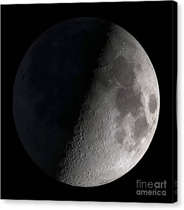 First Quarter Moon Canvas Print by Stocktrek Images