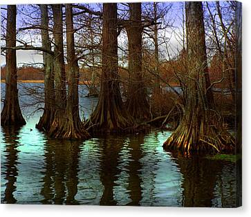 First Rays At Reelfoot Canvas Print by Julie Dant