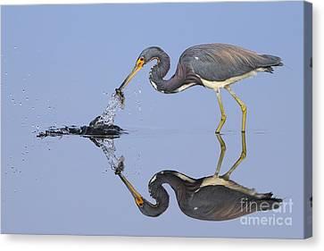 Fishing Reflection  Canvas Print by Rick Mann