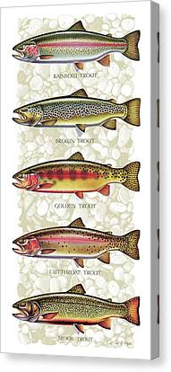 Five Trout Panel Canvas Print by JQ Licensing