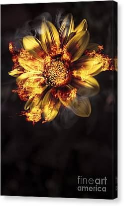 Flames Of Passion And Intimacy Canvas Print by Jorgo Photography - Wall Art Gallery
