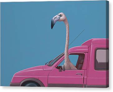 Flamingo Canvas Print by Jasper Oostland