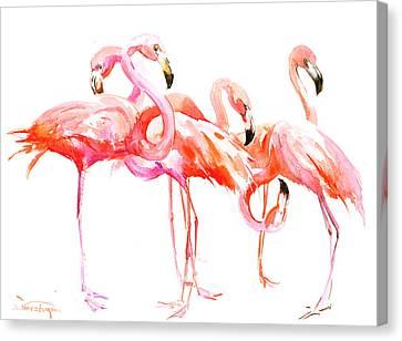 Flamingos Canvas Print by Suren Nersisyan