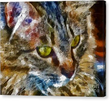 Fletcher Kitty Canvas Print by Marilyn Sholin