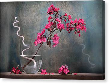 Fleur Canvas Print by Manfred Lutzius