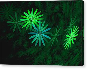 Floating Floral-007 Canvas Print by David Lane