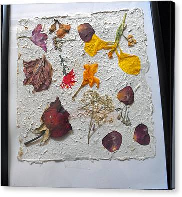 Floral Collage On Mullberry Handmade Paper Canvas Print by Mircea Veleanu