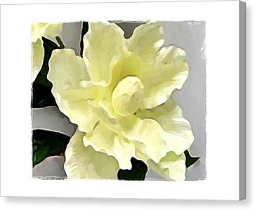 Canvas Print featuring the digital art Floral Series I by Terry Mulligan