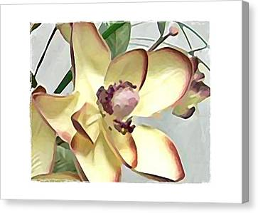 Canvas Print featuring the digital art Floral Series IIi by Terry Mulligan