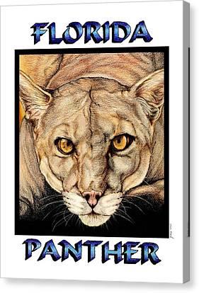 Florida Panther Canvas Print by Sheryl Unwin