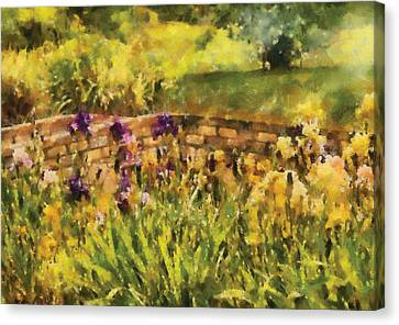 Flower - Iris - By The Bridge Canvas Print by Mike Savad