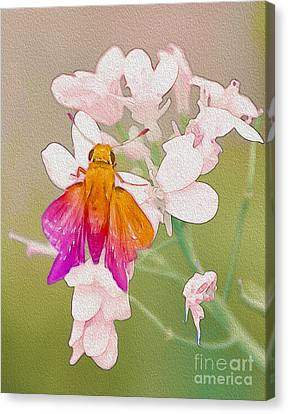 Flower Always A Giver  Canvas Print by Manjot Singh Sachdeva