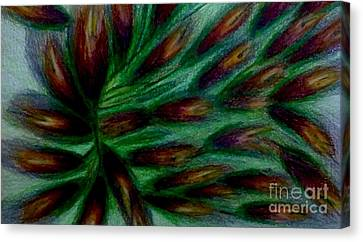 Flower Sunrise Canvas Print by Stephanie Zelaya