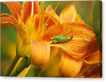 Flower With Company Canvas Print by Christina Rollo