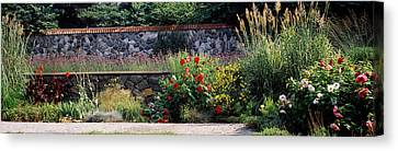 Flowering Plants In A Garden, Biltmore Canvas Print by Panoramic Images