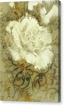 Flowers By The Window Canvas Print by Jorgo Photography - Wall Art Gallery