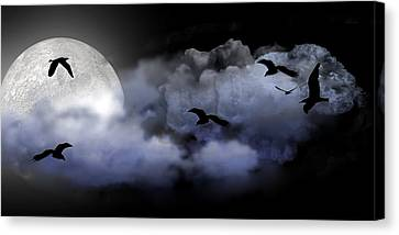Fly By Night Canvas Print by Evelyn Patrick