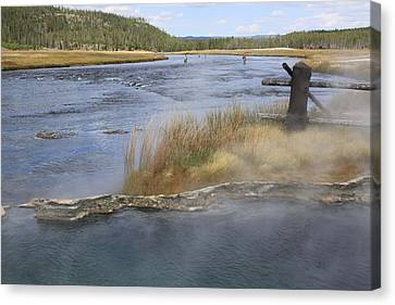 Fly Fishing And Geyser  Canvas Print by Gayle Johnson