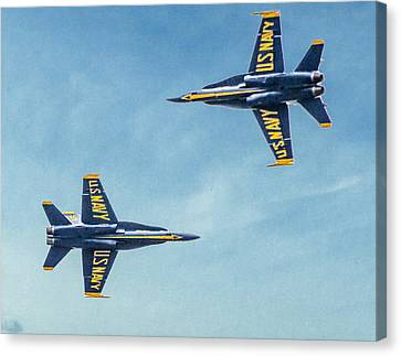 Flyby Canvas Print by Ches Black
