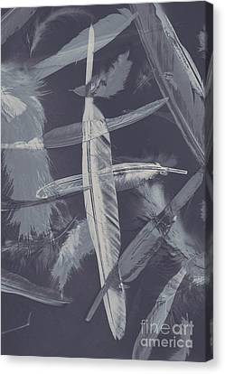 Flying Featherabstract Background Canvas Print by Jorgo Photography - Wall Art Gallery