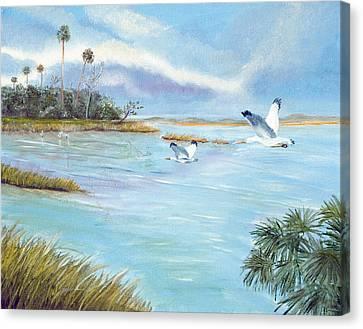 Flying High Canvas Print by Dorothy Riley