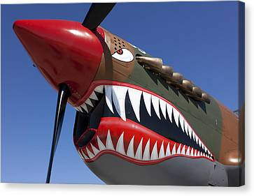 Flying Tiger Plane Canvas Print by Garry Gay