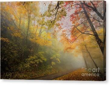 Foggy Fall Foliage II Canvas Print by Dan Carmichael