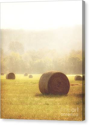 Foggy Morning Canvas Print by Tamyra Ayles