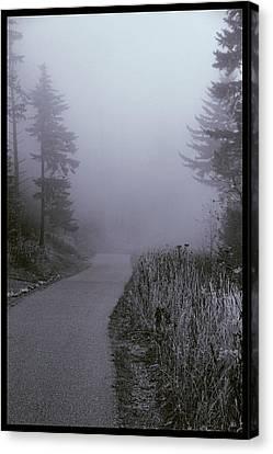 Foggy Path Clingman's Dome Canvas Print by Dan Sproul